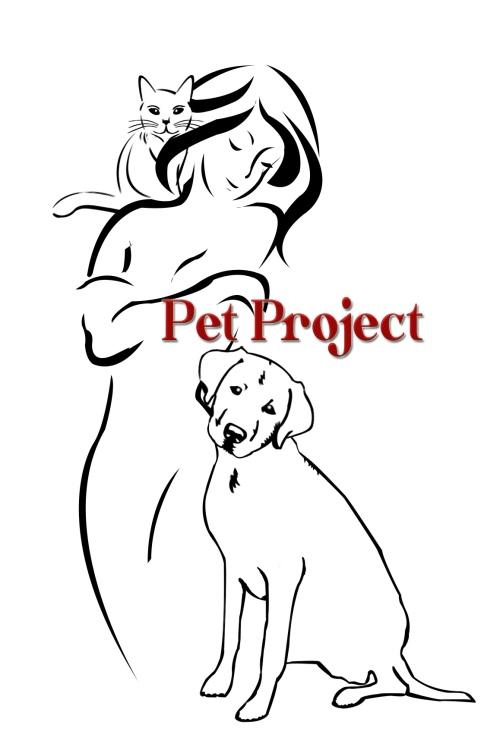 PetProject4
