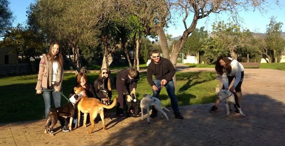 Dog Rescue Mallorca